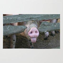 Naughty Pig | Freches Schwein Rug