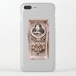 Stone Carving at Bethesda Terrace in Central Park. Clear iPhone Case