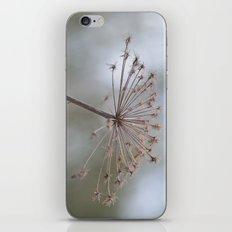Notwithstanding iPhone & iPod Skin