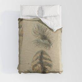 Naturalist Feathers Comforters