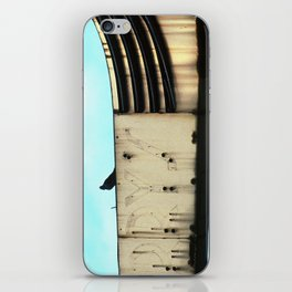 Five and Dime -- Pigeon iPhone Skin