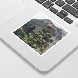 Bird on a Fir Tree Sticker