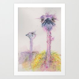 Ink Animals of Africa - Funky Ostriches Art Print