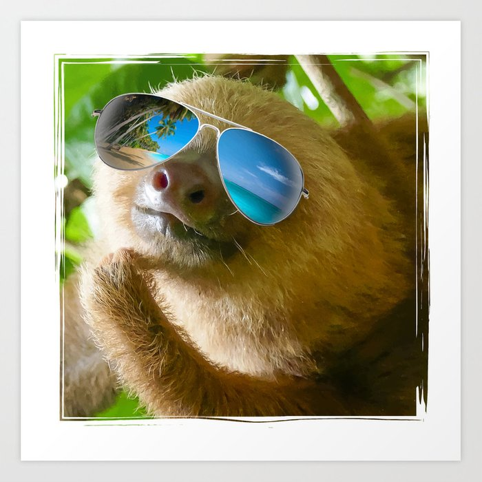 sloth with sunglasses chillin art print by erinmorris society6