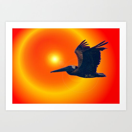 Sunset Pelican Art Print