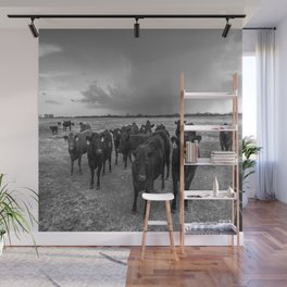 Hanging Out - Black and White Photo of Cows in Kansas Wall Mural