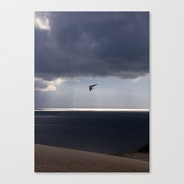 flying over the ocean Canvas Print