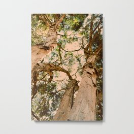 TREES OF MASSIVE INDIFFERENCE Metal Print