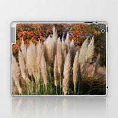 Pampass Grasses Laptop & iPad Skin