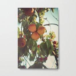 Life's a Peach Metal Print