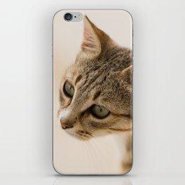 Cretan Cat Portrait iPhone Skin