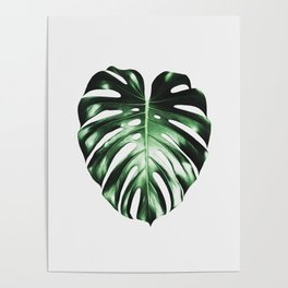 Plant, Leaf, Monstera, Nature, Modern art, Art, Minimal, Wall art Poster