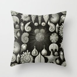 Ernst Haeckel - Thalamphora (Seashells) Throw Pillow
