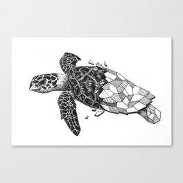 Glass Turtle Canvas Print