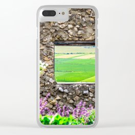 Window on a Transylvanian Meadow Clear iPhone Case