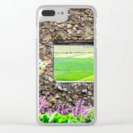 Window on a Transylvanian Meadow Clear iPhone Case