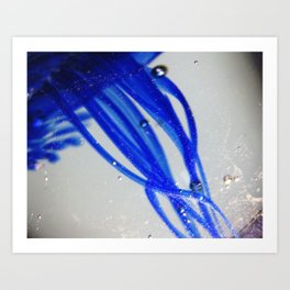 Cobalt Jellyfish Art Print