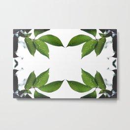 Mesmerizing Nature | Leafy Frame Up Metal Print