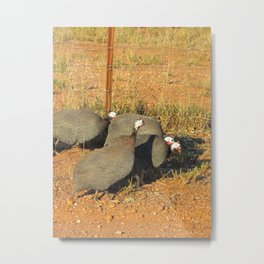 Guinea-fowl Gathering Metal Print