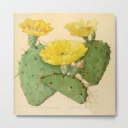 Vintage Cactus Metal Print