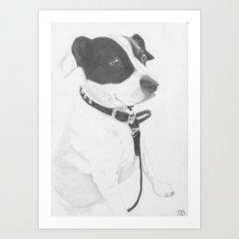 Jack Russell Crossbreed Art Print
