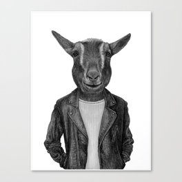 Don Pedro Old Goats Are Cool Canvas Print