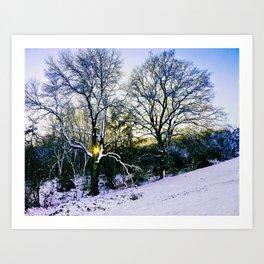 Winter Sunlight Art Print