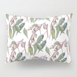 Australian eucalyptus tree branch Pillow Sham