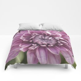 Soft Pink Mum, Nature Photography, Flower, Floral Print, Flower Print, Nature Print, Macro Art Comforters