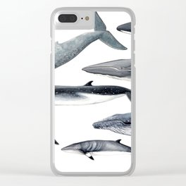 Whales and right whale Clear iPhone Case