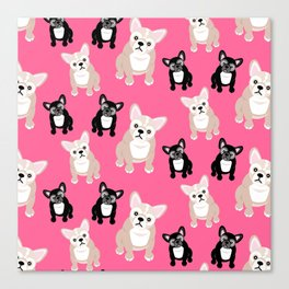 French Bulldog Puppies Pink Canvas Print