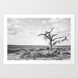 DESERT XI Art Print