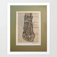 anatomical foot  Art Print