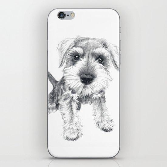 Schnozz the Schnauzer iPhone & iPod Skin