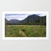 Summer in the Rockies- Meadow Views of the East Inlet Trail Part Four of Four Art Print