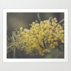 Quite and soothing Art Print