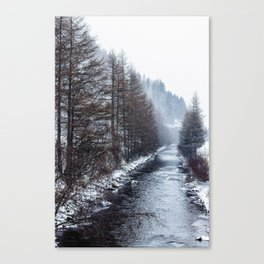 The Winter Path Forest (Color) Canvas Print