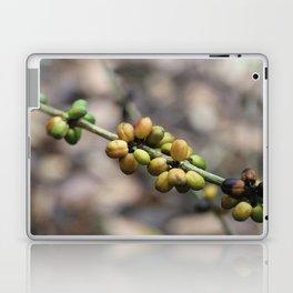 Illustration Coffee Beans Laptop & iPad Skin