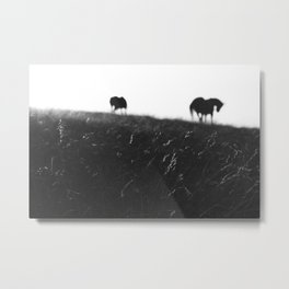 Horses on horizon Metal Print