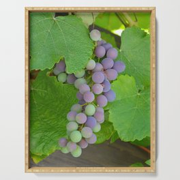 Purple concord grapes Serving Tray