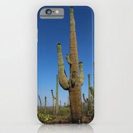 In The Sonoran Desert iPhone Case