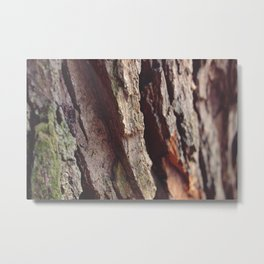 WOOD - LOG - TEXTURE Metal Print