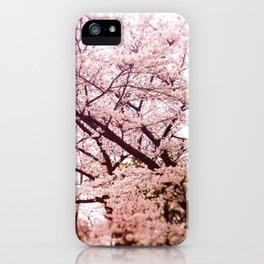 Hiroshima Castle (Cherry Blossom) iPhone Case