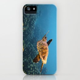 Caribbean Turtle iPhone Case