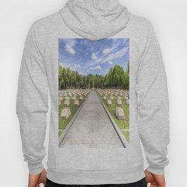 Russian War Graves Budapest Hoody