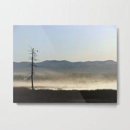 Mist on the Marsh 01 Metal Print