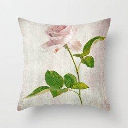 English Tea Rose  Throw Pillow