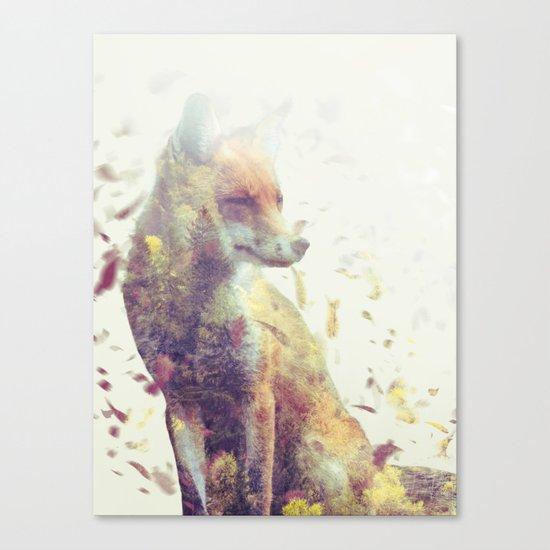Fall Fox  Canvas Print