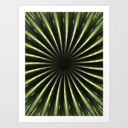 Cactus Garden Kaleidoscope 3 Art Print
