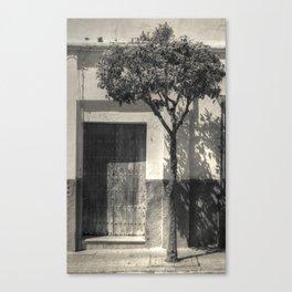 Door #13 Canvas Print